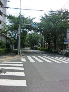 megurofudou_04