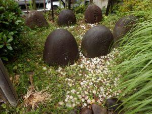 kameokahachiman11